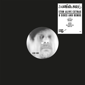 SLEAFORD MODS, b-sides & demos cover