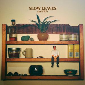 SLOW LEAVES, shelf life cover