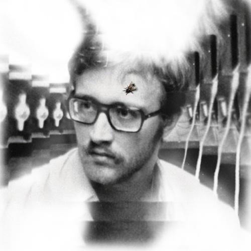 DAMAGED BUG, bug on yonkers cover