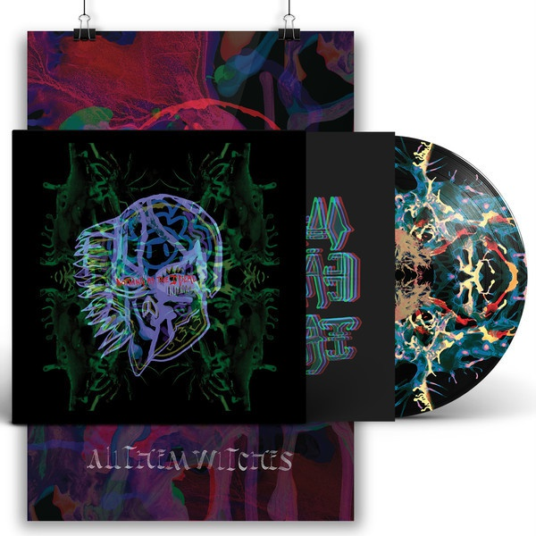 ALL THEM WITCHES, nothing as the ideal (deluxe picture) cover