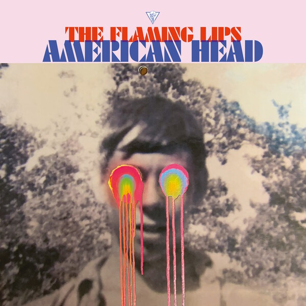 FLAMING LIPS, american head cover