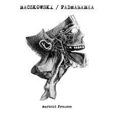 BACZKOWSKI / PADMANABHA, mastoid process cover