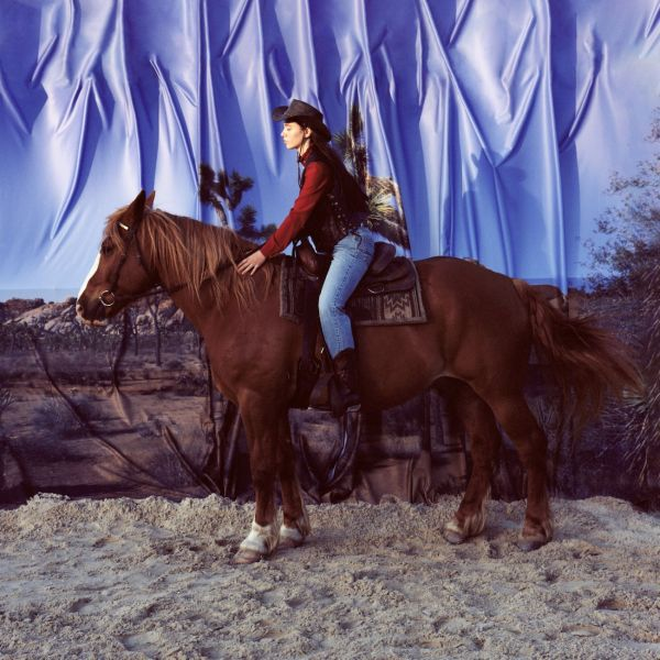 HOLY MOTORS, horse cover
