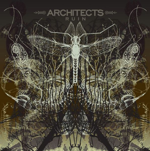 ARCHITECTS, ruin cover