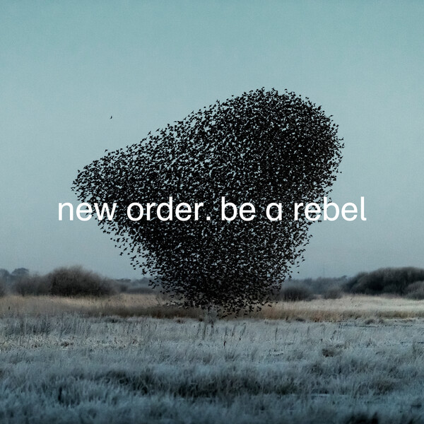 NEW ORDER, be a rebel cover