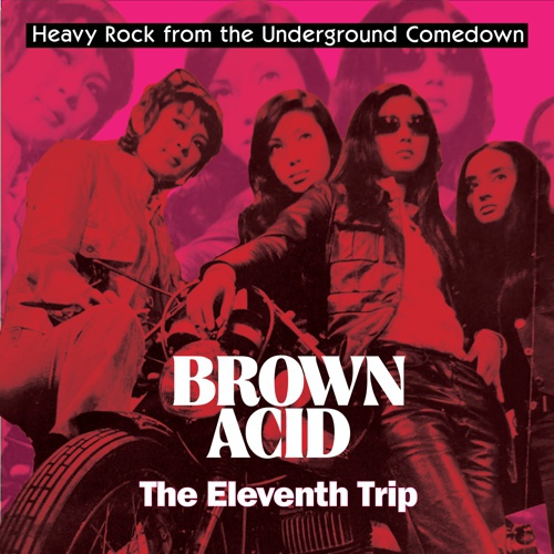 V/A, brown acid: the eleventh trip cover