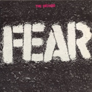 FEAR, the record cover