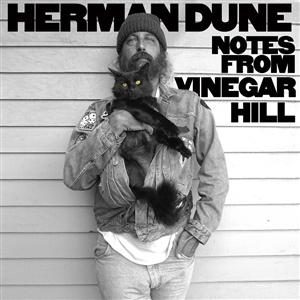 HERMAN DUNE, notes from vinegar hill cover
