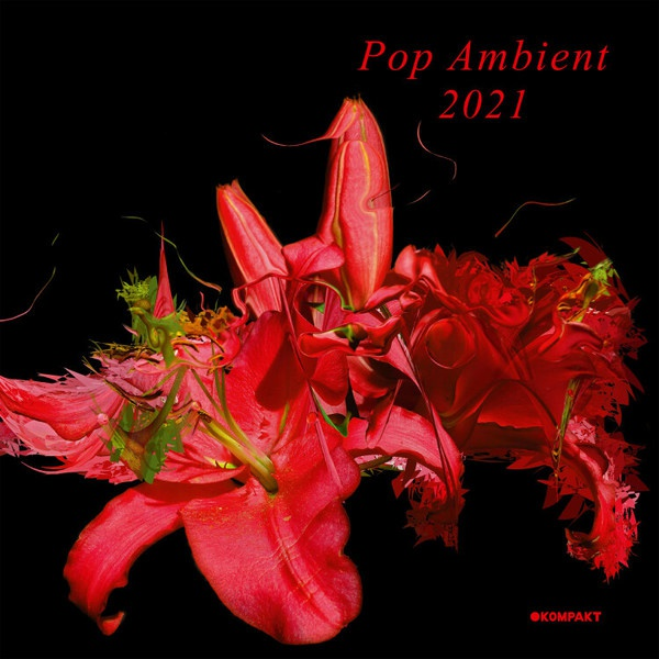V/A, pop ambient 2021 cover
