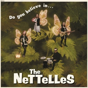 NETTELLES, do you believe in... cover