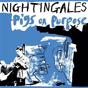 NIGHTINGALES, pigs on purpose cover