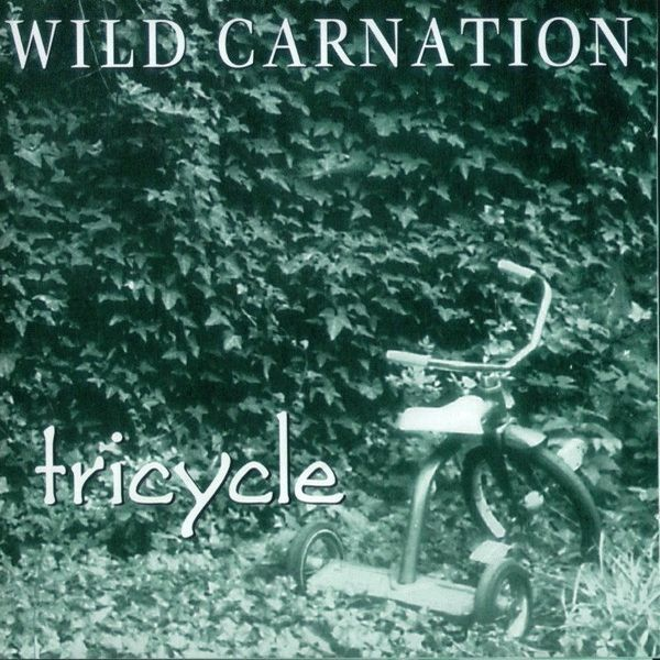WILD CARNATION, tricycle cover