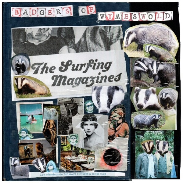 SURFING MAGAZINES, badgers of wymesword cover