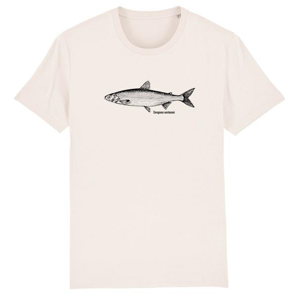 FISHSHIRT, blaufelchen (boy), azure cover