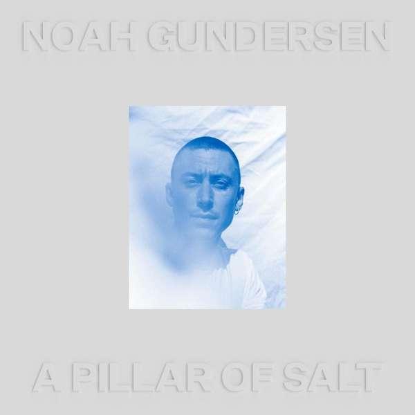 NOAH GUNDERSEN, a pillar of salt cover