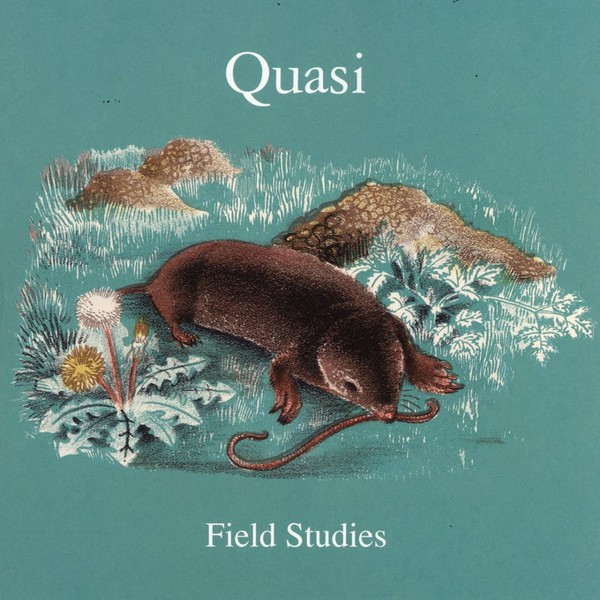 Cover QUASI, field studies