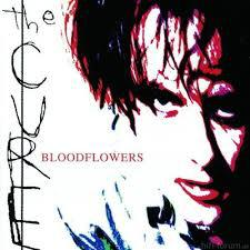 Cover CURE, bloodflowers