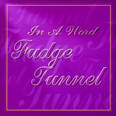 FUDGE TUNNEL, in a word cover