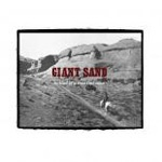 Cover GIANT SAND, ballad of a thin line man