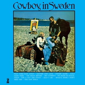 Cover LEE HAZLEWOOD, cowboy in sweden