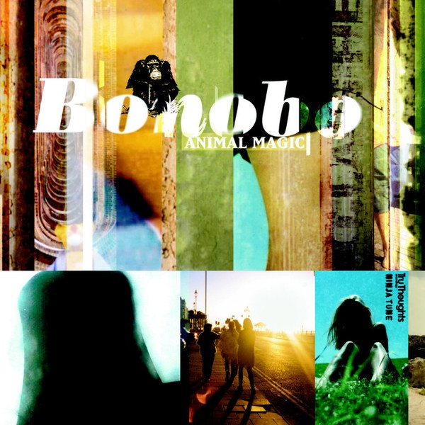 BONOBO, animal magic cover