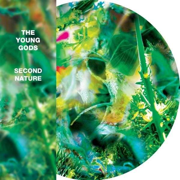 YOUNG GODS, second nature cover