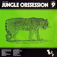 Cover NINO NARDINI, jungle obsession