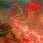 Cover MORBID ANGEL, blessed are the sick