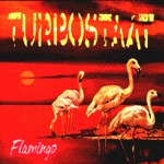 Cover TURBOSTAAT, flamingo