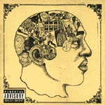Cover ROOTS, phrenology