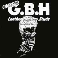Cover G.B.H., leather, bristles, no survivors ...