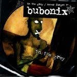 BUBONIX, in the grey cover
