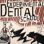 Cover EXPERIMENTAL DENTAL SCHOOL, hideous dance attack