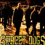 STREET DOGS, savin hill cover