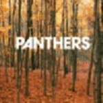 Cover PANTHERS, things are strange