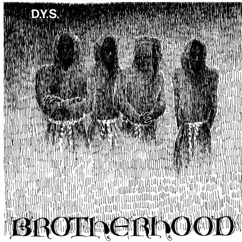 DYS, brotherhood cover