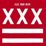 Cover V/A, flex your head (re-issue)