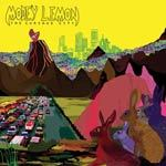 Cover MODEY LEMON, curious city
