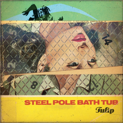 STEEL POLE BATH TUB, tulip cover