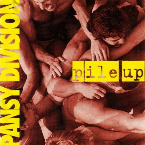 Cover PANSY DIVISION, pile up