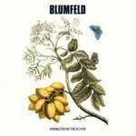 BLUMFELD, verbotene früchte cover