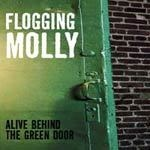 FLOGGING MOLLY, alive and behind cover