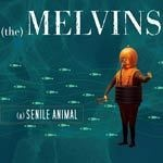 MELVINS, senile animal cover