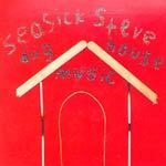 Cover SEASICK STEVE, doghouse music
