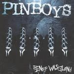 Cover PINBOYS, teenage wasteland