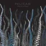 Cover PELICAN, city of echoes