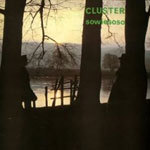 CLUSTER, sowiesoso cover