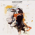 Cover PETER DOHERTY, grace/wastelands