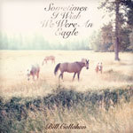 BILL CALLAHAN, sometimes i wish we were an eagle cover