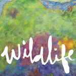 HEADLIGHTS, wildlife cover